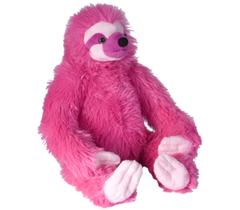 Colourful Sloths - Pink in Ajax ON, Reed's Florist Ltd