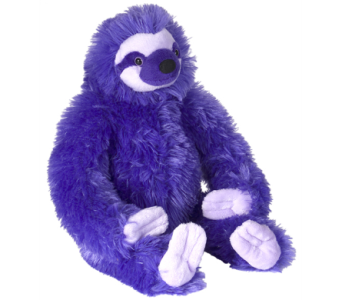 Colourful Sloths - Purple in Ajax ON, Reed's Florist Ltd
