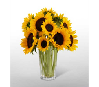 Golden Sunflower Bouquet in New York NY, CitiFloral Inc.