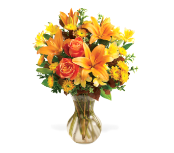 Tangerine in Big Rapids, Cadillac, Reed City and Canadian Lakes MI, Patterson's Flowers, Inc.