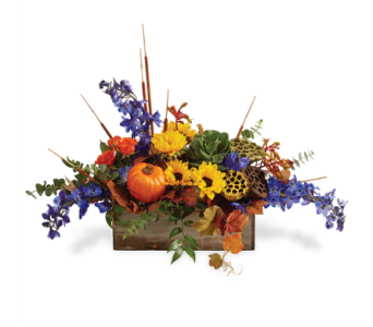 Garden Harvest in Big Rapids, Cadillac, Reed City and Canadian Lakes MI, Patterson's Flowers, Inc.