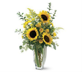 Sparkling Sunflowers in Nashville TN, The Bellevue Florist