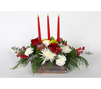 Holiday Centerpiece in Southampton PA, Domenic Graziano Flowers