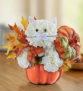 Fabulous Feline for Fall from 1800Flowers in Las Vegas NV, A French Bouquet