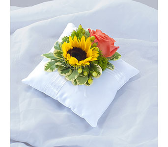 Sunset Pillow Insert in Metairie LA, Villere's Florist