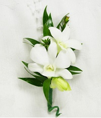 White Orchid Boutonniere  in Perrysburg & Toledo OH - Ann Arbor MI OH, Ken's Flower Shops