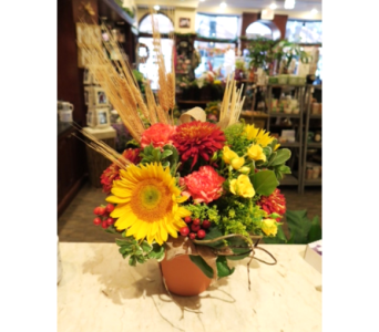 Hopewell Harvest in Princeton, Plainsboro, & Trenton NJ, Monday Morning Flower and Balloon Co.