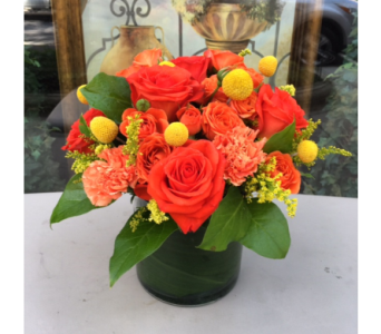 Oh So Orange in Princeton, Plainsboro, & Trenton NJ, Monday Morning Flower and Balloon Co.