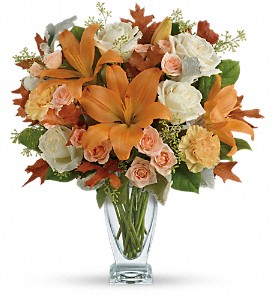 Teleflora's Seasonal Sophistication Bouquet in Edmonton AB, Petals On The Trail