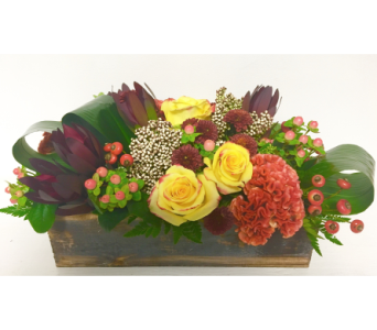 Rustic Centerpiece - 14 inch wood box - All-Around in Wyoming MI, Wyoming Stuyvesant Floral