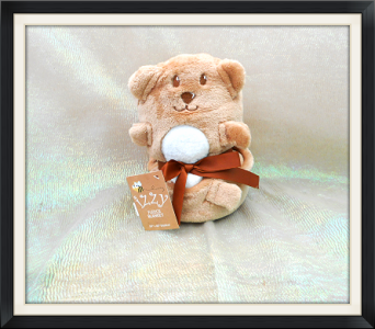 Teddy Bear Blankie in Tyler TX, The Flower Box