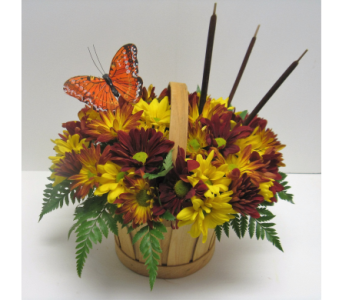 Autumn Butterfly Daisy Basket in Waverly NY, Jayne's Flower Shop