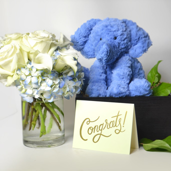 It's A Boy New Baby Gift Basket in Dallas TX, Dr Delphinium Designs & Events