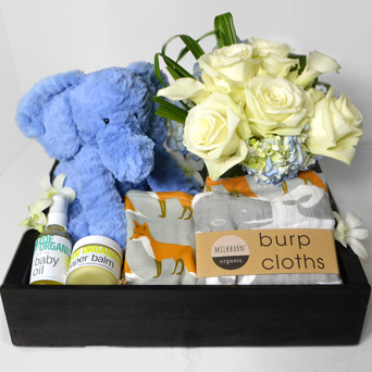 Bundle of Joy - Baby Boy Gift Basket in Dallas TX, Dr Delphinium Designs & Events