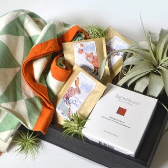 Warmth & Wellness Gift Basket in Dallas TX, Dr Delphinium Designs & Events