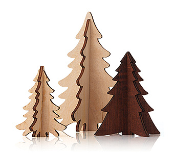 Frasier Fir Northwoods Tree Trio in Detroit and St. Clair Shores MI, Conner Park Florist