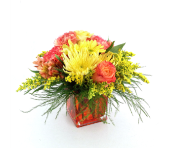 Autumn Royale in Nashville TN, Emma's Flowers & Gifts, Inc.
