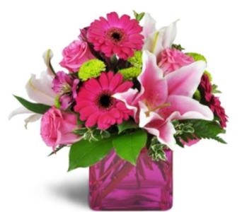 Pizzazz in Needham MA, Needham Florist