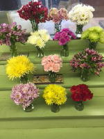Single Bloom Special! in Waukegan IL, Larsen Florist