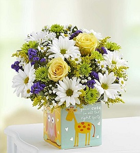 Playtime for Baby Boy Bouquet in Camp Hill and Harrisburg PA, Pealer's Flowers