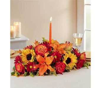 Fields of Europe for Fall in Fairfax VA, Exotica Florist, Inc.