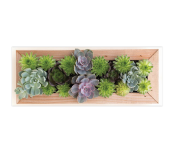 Cedar Rectangle Picture Frame in Norristown PA, Plaza Flowers