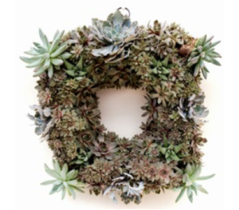 Square Moss Wreath in Norristown PA, Plaza Flowers