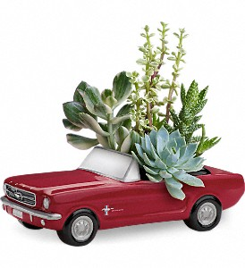 Dream Wheels '65 Ford Mustang by Teleflora in Dickinson ND, Simply Flowers & Gifts