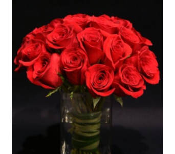 Red 18 in Needham MA, Needham Florist