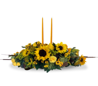 Double Yellow Centerpiece in Indianapolis IN, McNamara Florist
