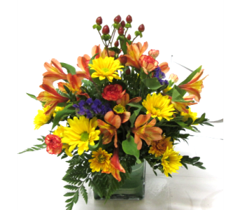 Fall Cube in Worcester MA, Holmes Shusas Florists, Inc