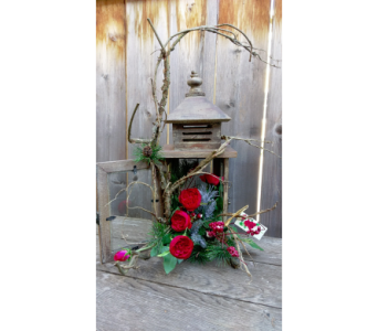 Winter Lantern in Lawrence KS, Owens Flower Shop Inc.
