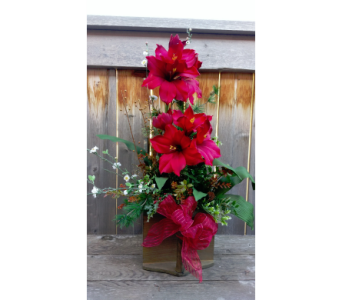 Amaryllis in Cranberry Scoop in Lawrence KS, Owens Flower Shop Inc.
