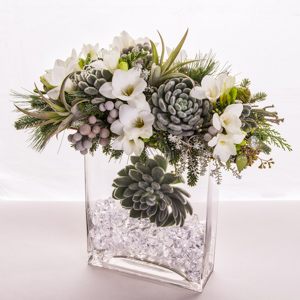 Baby It's Cold Outside  in New York NY, Starbright Floral Design