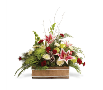 Rustic Christmas in Big Rapids, Cadillac, Reed City and Canadian Lakes MI, Patterson's Flowers, Inc.