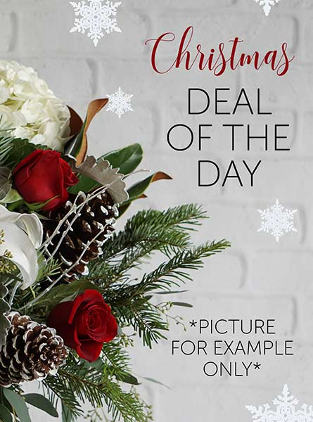 Christmas Deal of the Day in Elmhurst IL, Pfund & Clint Florist