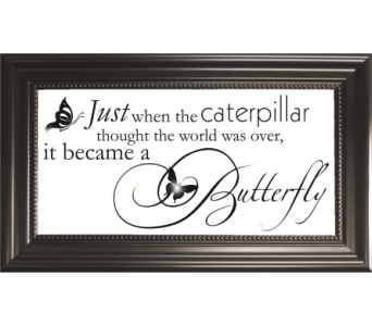 Just When the Caterpillar in Isanti MN, Elaine's Flowers & Gifts