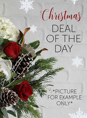 Christmas Deal of the Day in Fort Myers FL, Fort Myers Floral Designs