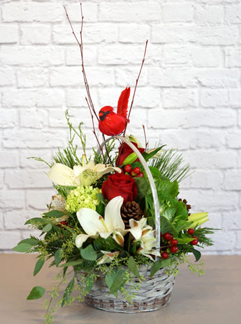 Christmas Cardinal in Fort Myers FL, Fort Myers Floral Designs