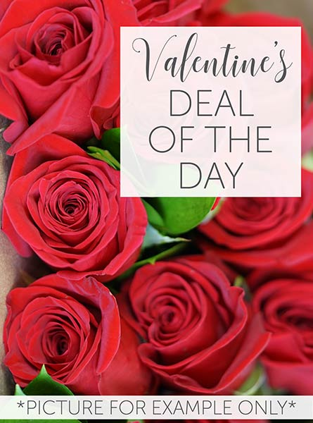 Valentine's Deal of the Day in Chicagoland IL, Amling's Flowerland