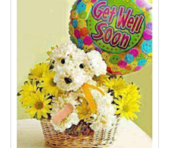 Sick As A Dog� in El Paso TX, Executive Flowers