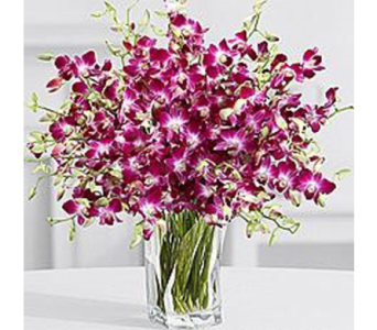 ELEGANT SOPHISTICATION BOUQUET  in Bellevue WA, CITY FLOWERS, INC.