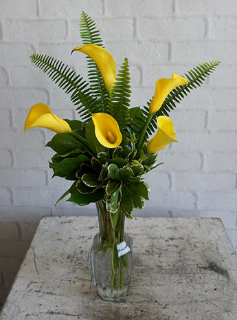 Friendship, Yellow Callas in Fort Myers FL, Fort Myers Floral Designs