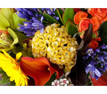 Seasonal Mixed Arrangement in Needham MA, Needham Florist