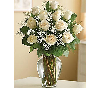 White Roses in Needham MA, Needham Florist