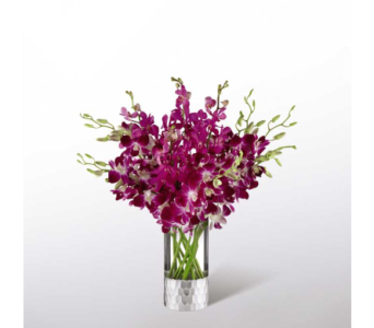 The FTD� Orchid Bouquet by Vera Wang in Norfolk VA, The Sunflower Florist