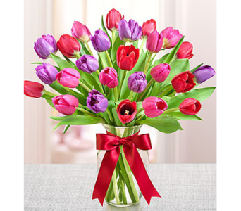 Tulips for Your Valentine in Watertown CT, Agnew Florist