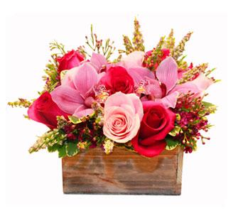Seattle Fruit Basket Delivery Flowers Gourmet Food Baskets