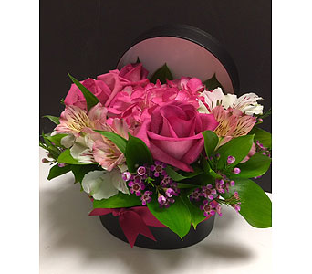 Pink Sophistication  in Brampton ON, Flower Delight