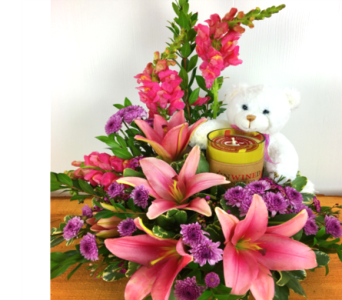 Cuddle Me Close in Baltimore MD, Raimondi's Flowers & Fruit Baskets